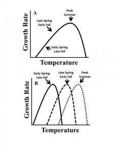 Fixed (A) and variable (B) thermal performance curves. The approximate time of year for the A. tonsa season is indicated for each.
